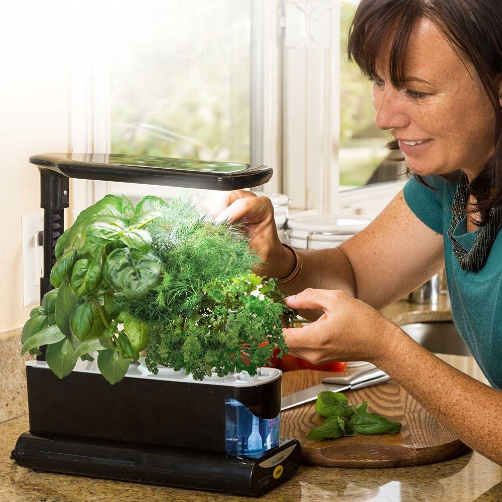 How To Grow Your Very Own Indoor Herb Garden – Tips And Ideas